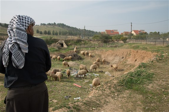 A Palestinian man tends his sheep near the illegal West Bank Israeli settlement Mehola, January 22, 2014. Image by Ryan Rodrick Beiler via Shutterstock.