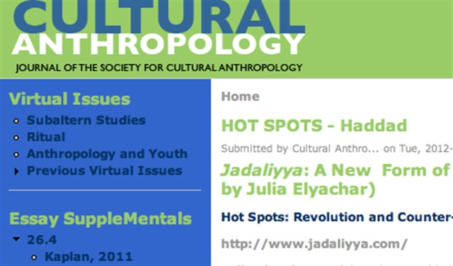 Jadaliyya: A New Form of Producing and Presenting Knowledge in/of the Middle East (Interview with Bassam Haddad by Julia Elyachar)